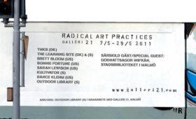 Radical Art Practises|Galleri 21|2011